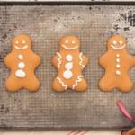 suikervrije gingerbread koekjes